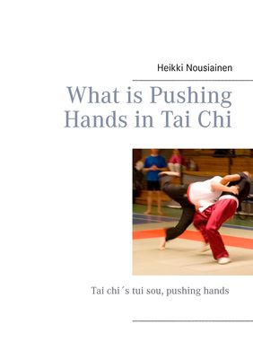 What is Pushing Hands in Tai Chi