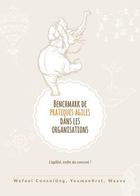 Benchmark de pratiques agiles dans les organisations