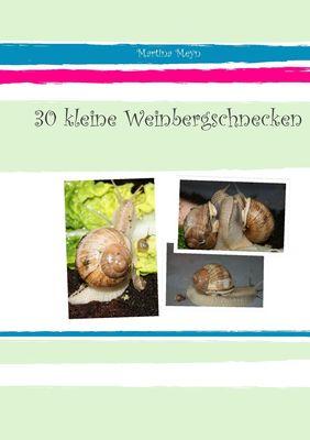 30 kleine Weinbergschnecken