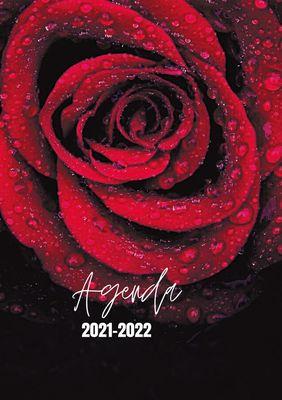 Agenda Rose 2021-2022