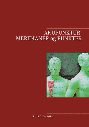 Akupunktur Meridianer og Punkter