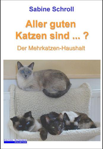 Aller guten Katzen sind ...?