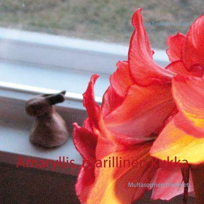 Amaryllis, ritarillinen kukka