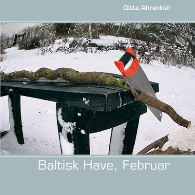 Baltisk Have, Februar