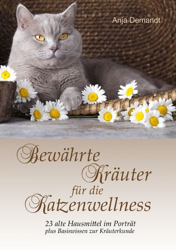 Bewährte Kräuter für die Katzenwellness