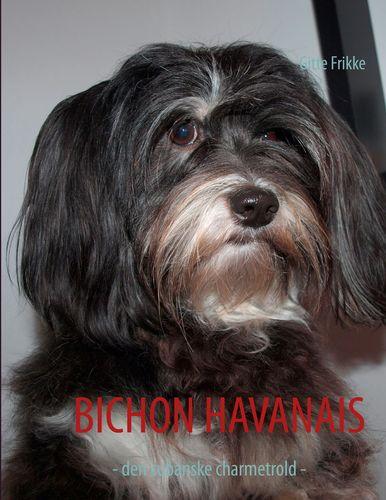 Bichon Havanais