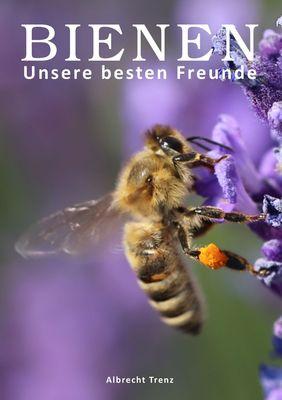 Bienen - Unsere besten Freunde