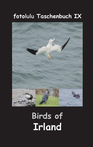 Birds of Irland
