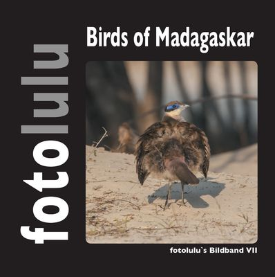 Birds of Madagaskar