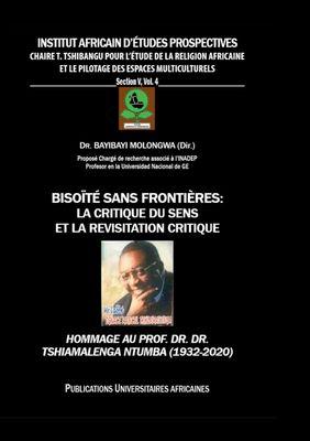 Bisoïté sans frontières : La critique du sens et la révisitation critique
