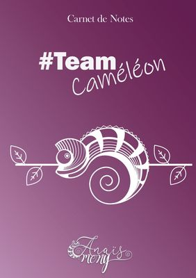 Carnet de notes TeamCaméléon