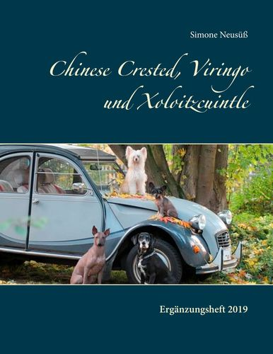 Chinese Crested, Viringo und Xoloitzcuintle II