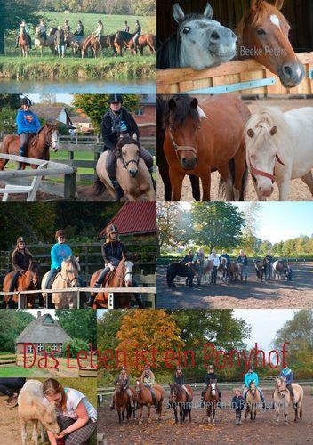 Das Leben ist ein Ponyhof