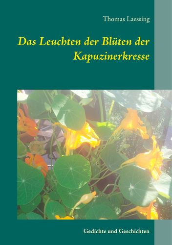 Das Leuchten der Blüten der Kapuzinerkresse