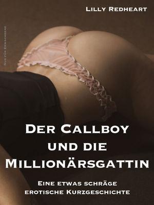 Der Callboy und die Millionärsgattin