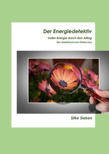 Der Energiedetektiv