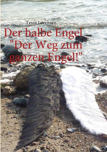 Der halbe Engel Band 3 Der Weg zum ganzen Engel!