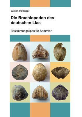 Die Brachiopoden des deutschen Lias