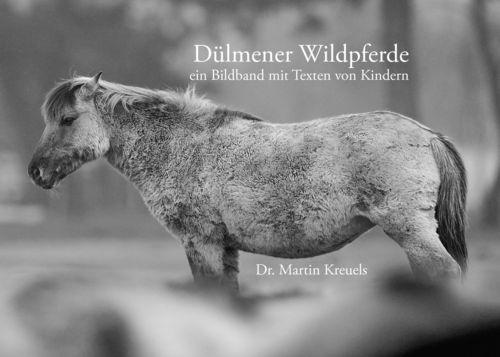 Dülmener Wildpferde