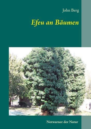 Efeu an Bäumen