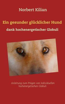 Ein gesunder glücklicher Hund dank hochenergetischer Globuli