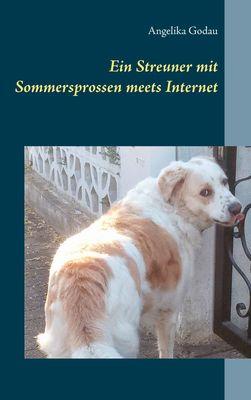 Ein Streuner mit Sommersprossen meets Internet