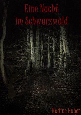 Eine Nacht im Schwarzwald