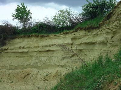 Einige ausgesuchte Mineralien, Gesteine und Fossilien aus Süddeutschland