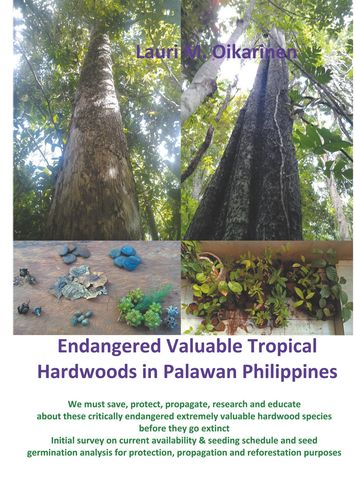 Endangered Valuable Tropical Hardwoods in Palawan Philippines