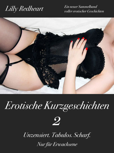 Erotische Kurzgeschichten 2 - Unzensiert. Tabulos. Scharf.