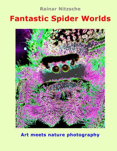Fantastic Spider Worlds