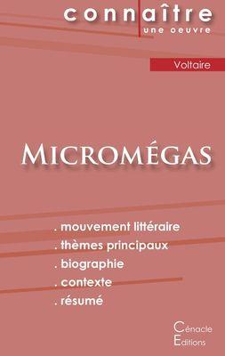 Fiche de lecture Micromégas (Analyse littéraire de référence et résumé complet)