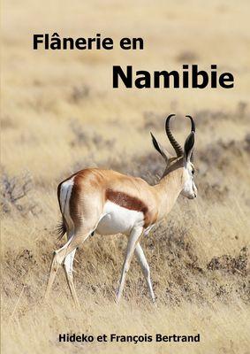 Flânerie en Namibie