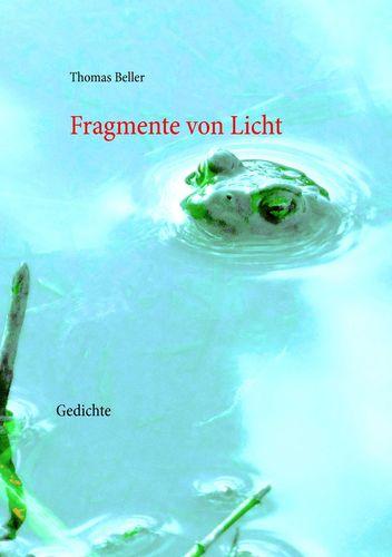 Fragmente von Licht