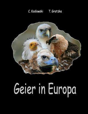 Geier in Europa