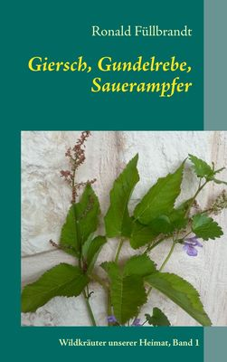 Giersch, Gundelrebe, Sauerampfer