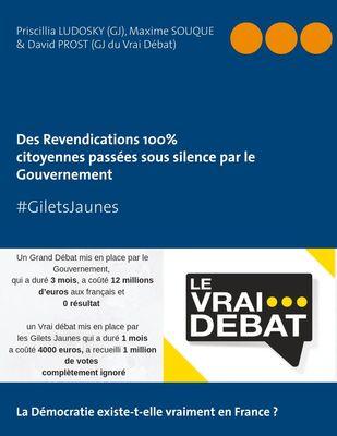 """#GILETS JAUNES """"Revendications 100% citoyennes passées sous silence par le Gouvernement"""""""