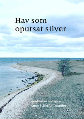 Hav som oputsat silver