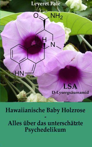 Hawaiianische Baby Holzrose