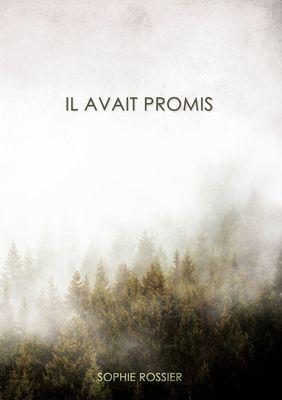 Il avait promis