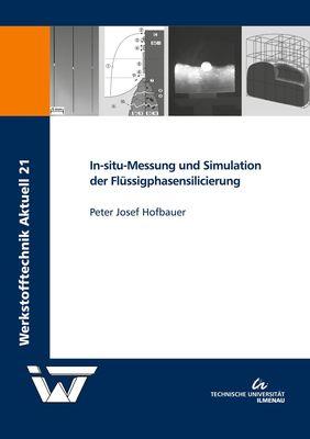 In-situ-Messung und Simulation der Flüssigphasensilicierung
