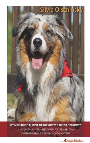 Ist mein Hund für die tiergestützte Arbeit geeignet?