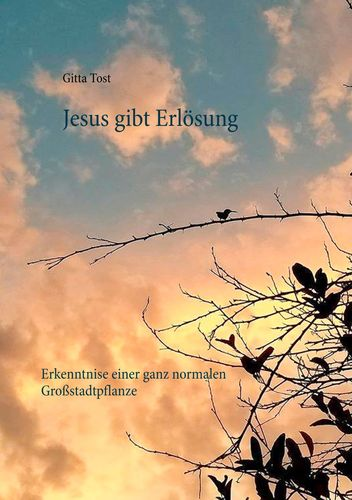 Jesus gibt  Erlösung