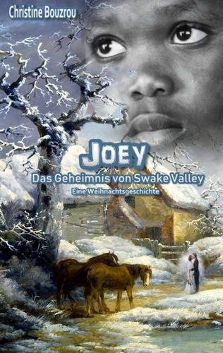 Joey-Das Geheimnis von Swake Valley