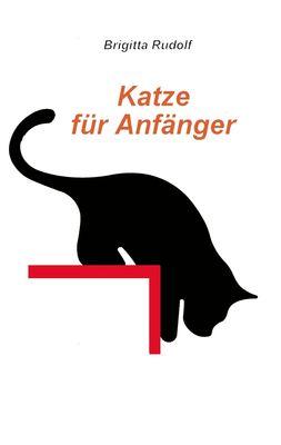 Katze für Anfänger