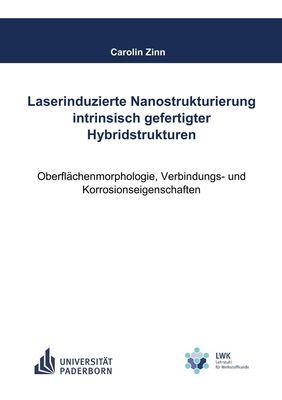 Laserinduzierte Nanostrukturierung intrinsisch gefertigter Hybridstrukturen