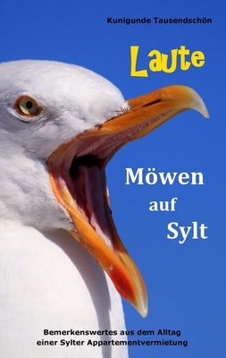 Laute Möwen auf Sylt