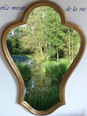 le miroir de la vie
