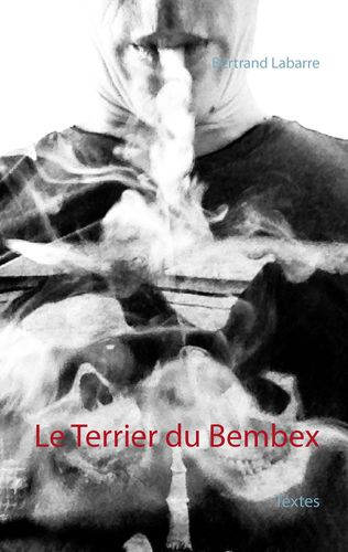 Le Terrier du Bembex
