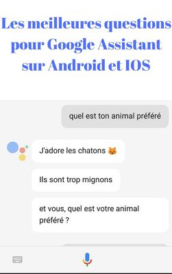Les meilleures questions pour google assistant sur android et IOS